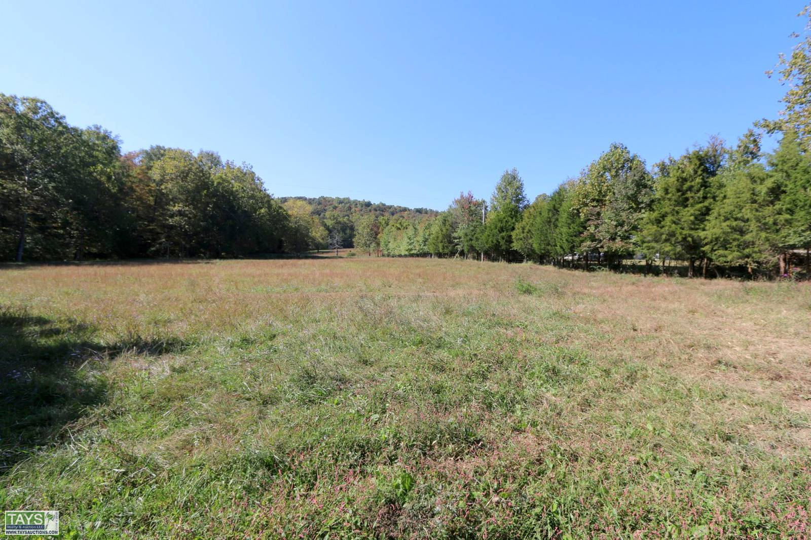 ONLINE ABSOLUTE AUCTION: 3 BR / 2 BA HOME & OUTBUILDING ON 56.90 Ac± in 5 TRACTS